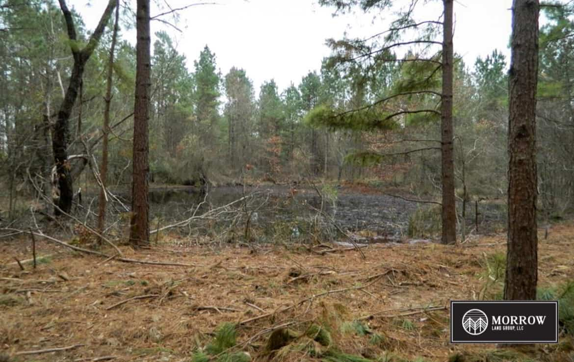 Hunting property for sale near Texarkana Texas