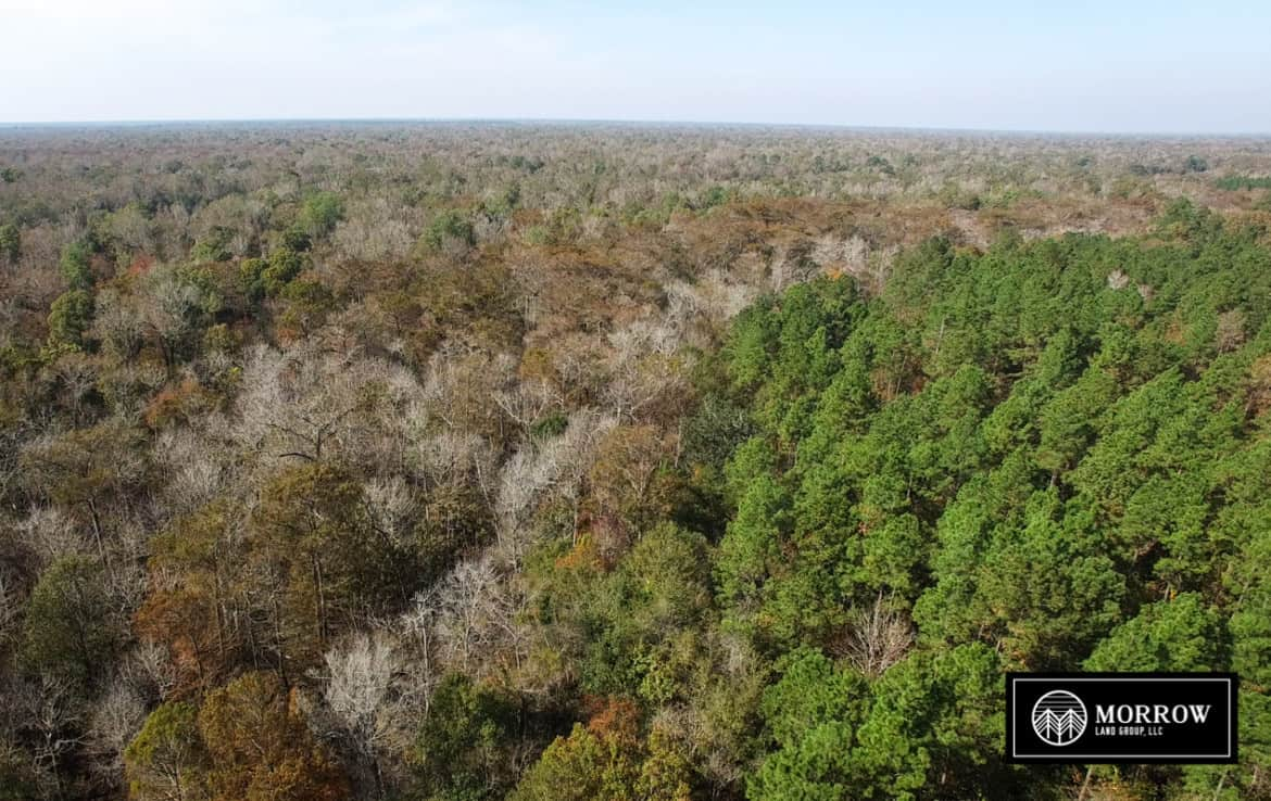 Land for sale in Starks, LA