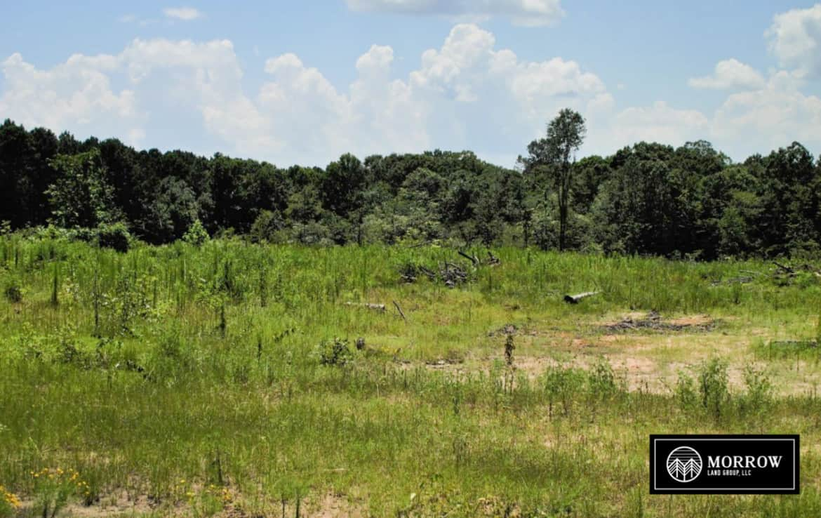 Rural land for sale in Louisiana