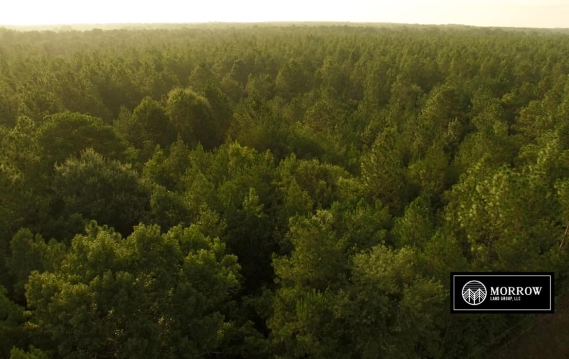 Land for sale in Reeves, LA