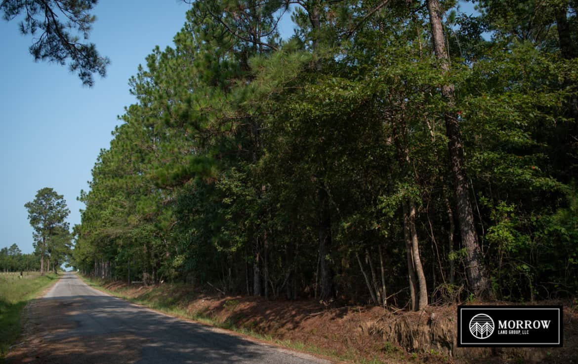 Hunting land for sale in Louisiana