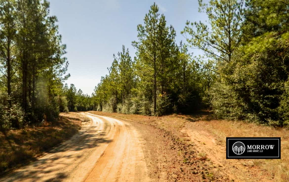 Land for Sale in Newton County, TX