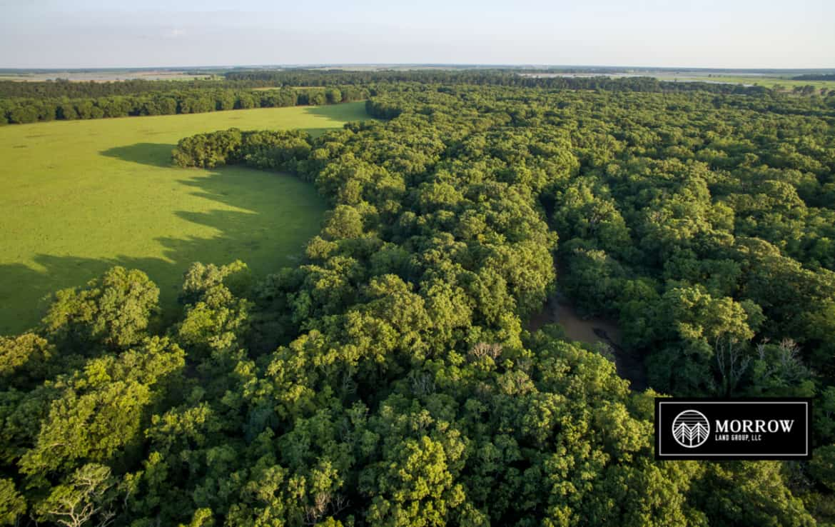 Land for sale in Evangeline Parish, LA