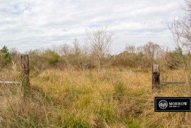 Land for sale in Calcasieu Parish, Louisiana