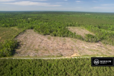 Land for sale in Beauregard Parish
